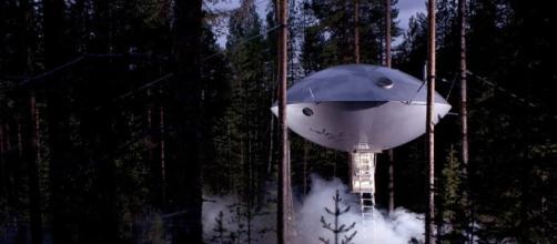 Voglio ritornare bambino: gli hotel sugli alberi più belli al ... - latitudeslife.com