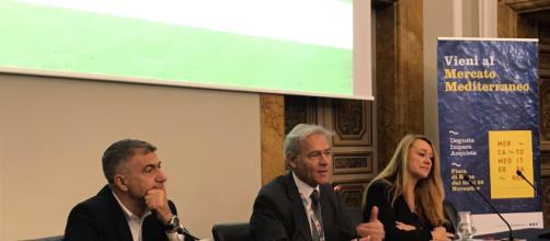 Mercato Mediterraneo, presentazione a Roma, Palazzo Rospigliosi, primo a sinistra Pecoraro Scanio, presidente del comitato scientifico