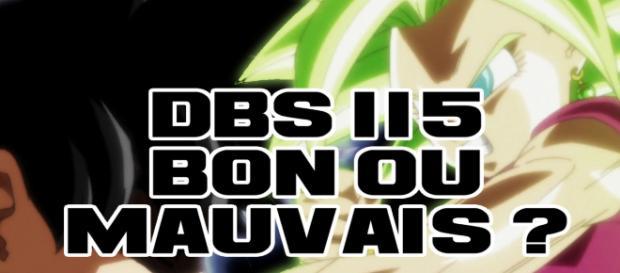 DBS 115 : Bon ou mauvais objectivement ?