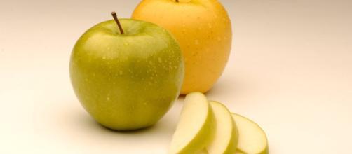 La mela artica Ogm che non diventa mai nera