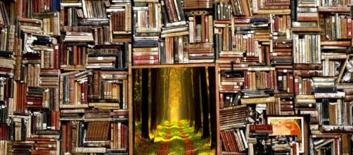 Library to Fantasy-Land (Image via: pixabay.com)