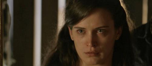 Gael implora perdão de Clara - Google