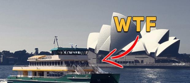 Ferry McFerryFace is born in Sydney
