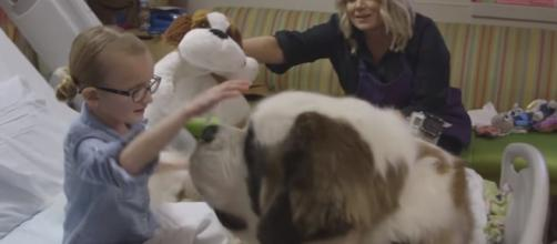 Therapy dogs can bring great joy to people. [Phoenix Children's Hospital Foundation / YouTube screencap]