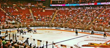 Could NFL be coming to Houston? - [Arizona Coyotes found on Flickr]