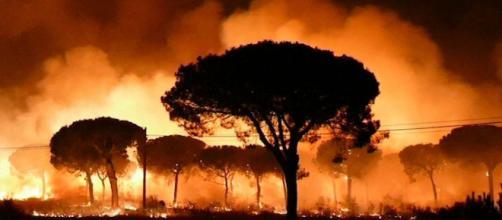 Este año es ya el peor en incendios forestales desde el 2012