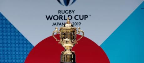 Coupe du Monde 2019 : Le calendrier sera connu le 2 novembre ... - rugby365.fr