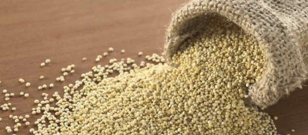 Amaranto: il grano degli dei (che non è un cereale) - Green.it - green.it