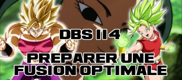 DBS 114 : Préparer une fusion optimale...