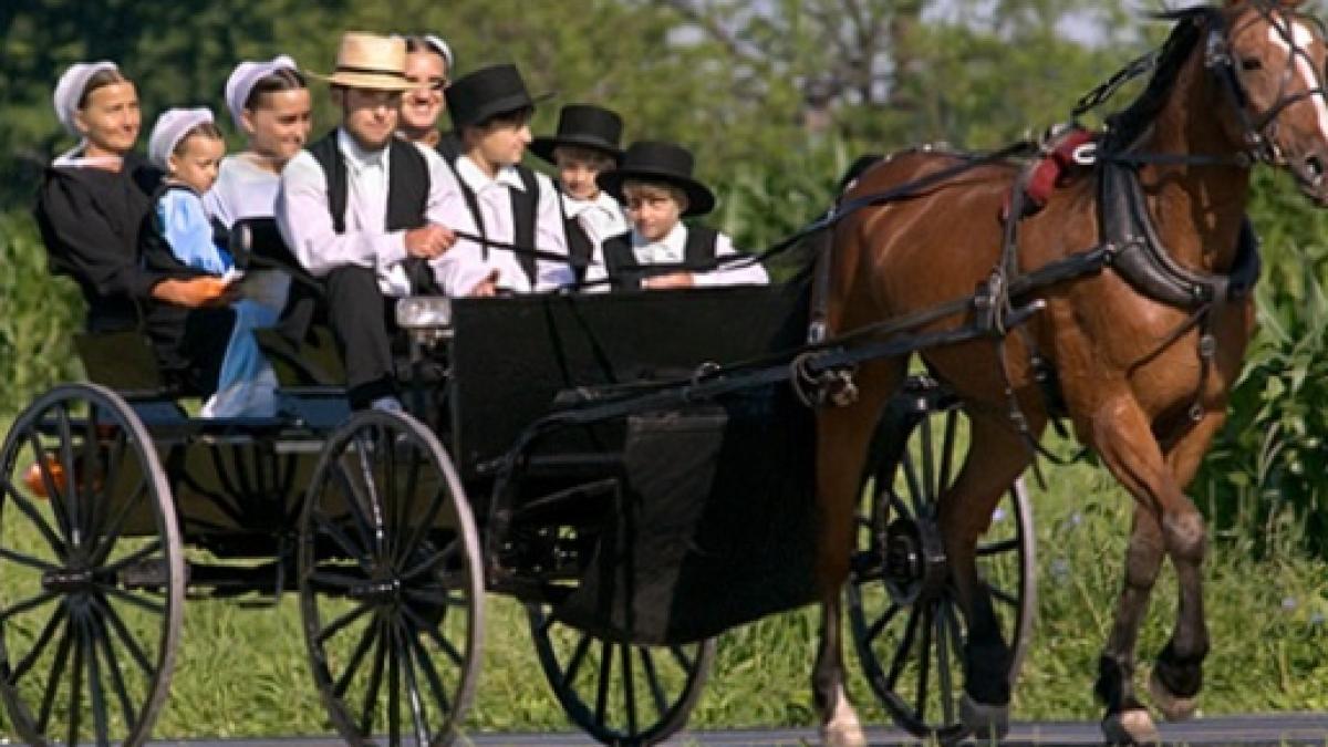 Risultati immagini per foto amish