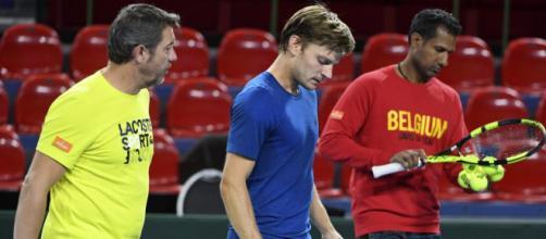 """David Goffin content d'être de retour en Coupe Davis: """"C'est un ... - sudinfo.be"""