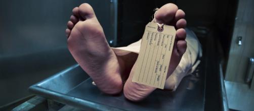 A qué huelen los cadáveres? - muyinteresante.es