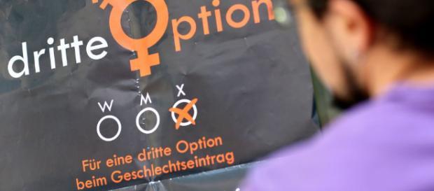 Drittes Geschlecht - Weder Männlein noch Weiblein | Cicero Online - cicero.de