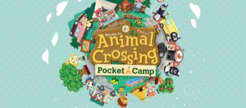 'Animal Crossing: Pocket Camp' tricks and tips [Photo via pocketcamp/screenshot]