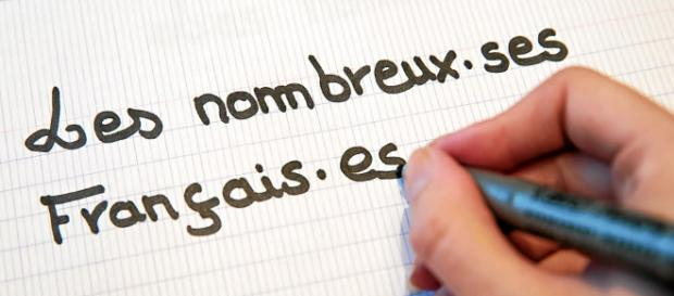 L'écriture inclusive - homardenchaine.fr