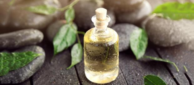 Tea Tree Oil - Image free for usage.