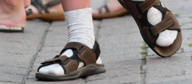 Herren und Damen 1 Paar Ginger Fox Socken und Sandalen Neuheit ... - bporg.de