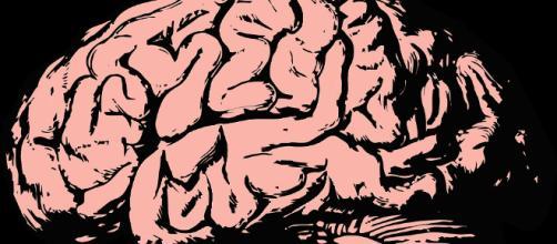 A pesar de todos los avances en la tecnología, todavía queda mucho por comprender del cerebro humano