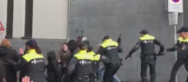 Antifa zabiła policyjnego konia. Policjanci szybko się zemścili [WIDEO]