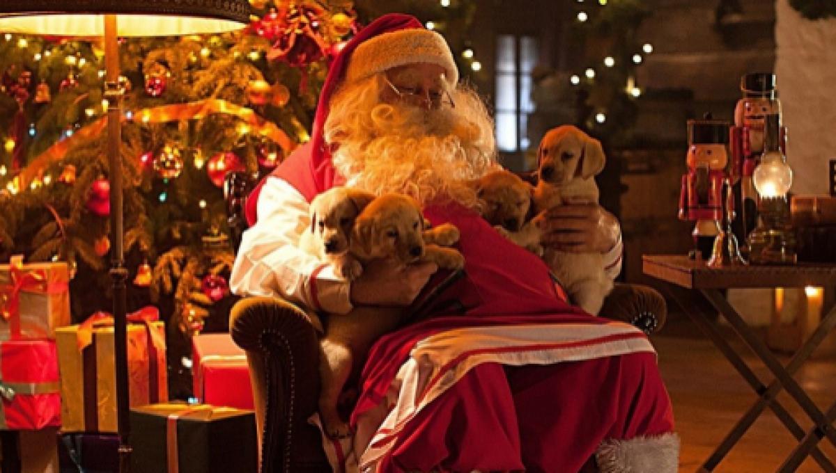 Visitare La Casa Di Babbo Natale.Caserta Il Primo Villaggio Di Babbo Natale