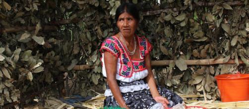El estado de pobreza en Chiapas
