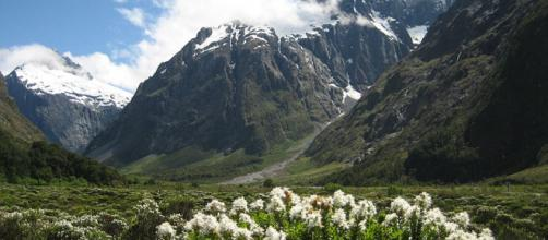 New Zealand's natural beauty, in the Fiordland National Park [via Wikimedia, by Marc Mann]