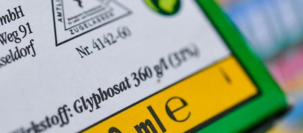 Glyphosate : cafouillage au sein du gouvernement - Le Point - lepoint.fr