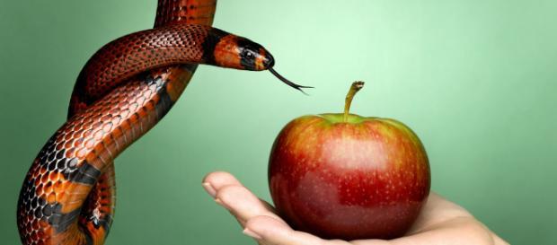 O símbolo do pecado, a serpente e a maçã (Imagem/Getty Images)