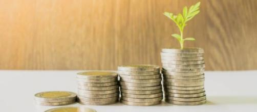 Aprenda como investir dinheiro no Tesouro Direto (Reprodução)