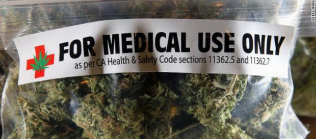 Le cannabis - Planter, posséder et fumer légalement en Californie - frenchdistrict.com