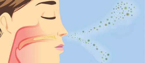 Risco de demência pode ser verificado ao não sentir esses odores