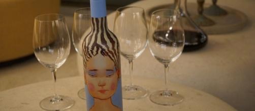 Vinho produzido na vinícola Vik, no Chile (Fotos: Paulo Panayotis/Adriana Reis)