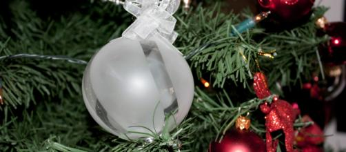 Your mind should be as serene as the holidays [image source: Rexness/Christmas tree 2010/Flickr]