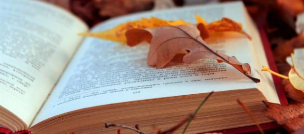 Novembre: i titoli più attesi in uscita in libreria | Befan.it - befan.it