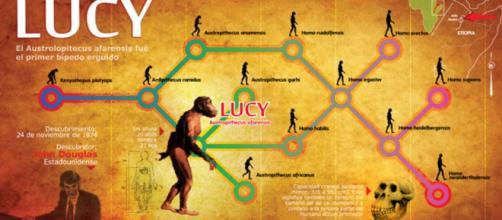 Las Ciencias Sociales en la Secundaria: Los orígenes del los seres ... - blogspot.com
