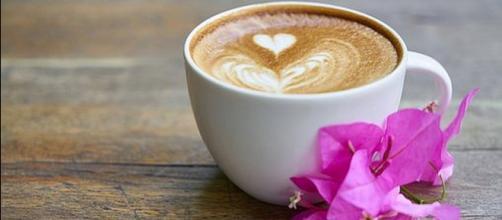 November 8 is National Cappuccino Day [Image: Engin_Akyurt/Pixabay.com]