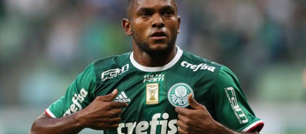 Miguel Borja é atacante da equipe