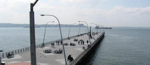 Veterans Memorial Pier where a vehicle plunged into the ocean. Image via Wikipedia.