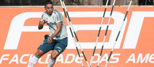 Antônio Carlos ficará mais um ano no Palmeiras