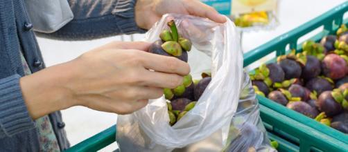 sacchetti frutta e verdura a pagamento