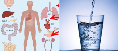 Drinking water benefits the immune system. Image Credit: Blasting News