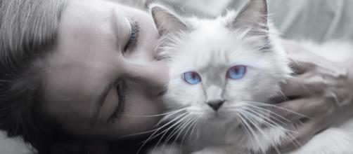 Some humans have a special bonding with their pets. [Image:Pixabay/Skitterphoto]