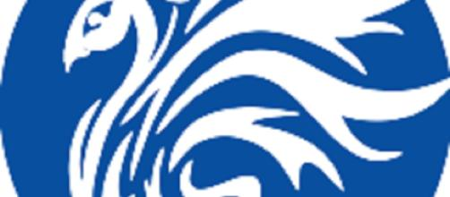 Assunzioni Centro Phoenix Neuropsicologi Settore Età Evolutiva-Psicoterapeuti Cognitivo Comportamentali
