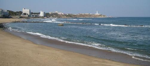 Beach of Japan (Image credit – Neruru, Wikimedia Commons)