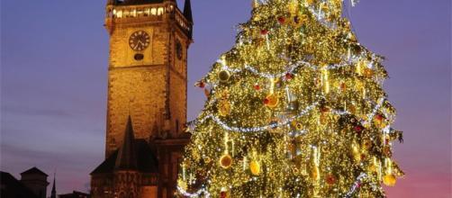 De dónde viene el árbol de Navidad? - com.es