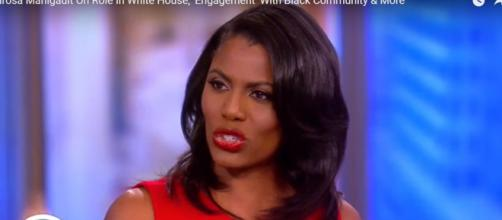 Reasons why so many people seem to hate Omarosa. - [Image via The View YouTube screencap]