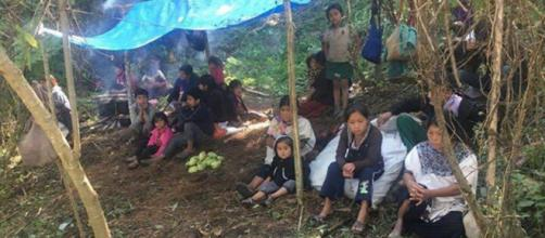 Miles de indígenas mexicanos despojados de sus tierras con violencia, están en riesgo de morir de hambre y frío.