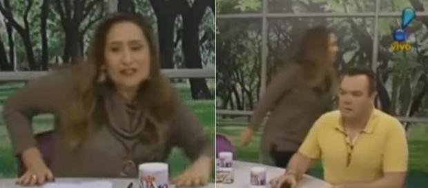Sônia Abrão é atacada por Leo Dias