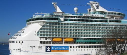 The Independence of the Seas (Image credit – Bernt Rostad, Wikimedia Commons)