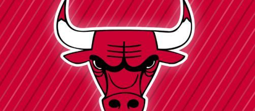 Chicago Bulls logo -- Michael Tipton/Flickr.